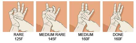 If you don't have a thermometer, reference this picture for the touch method.
